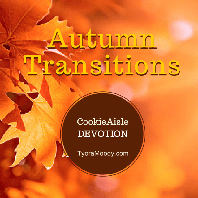 Autumn Transitions